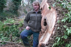 Baumfällung mit 25t Seilwinde mit Forstunternehmen Volker Schinde