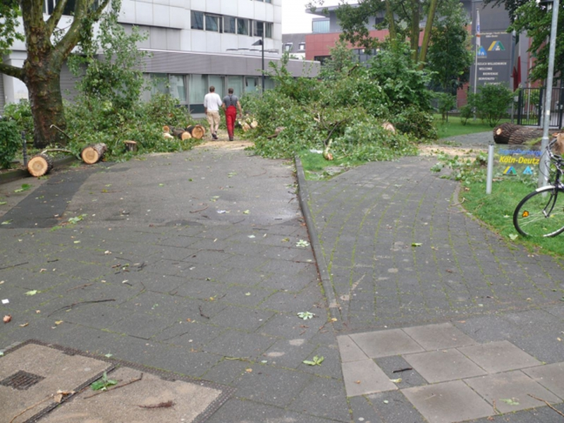 Sturmschaden Köln
