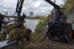 Baumfäll- und Rodungssarbeiten Stammheimer Ufer
