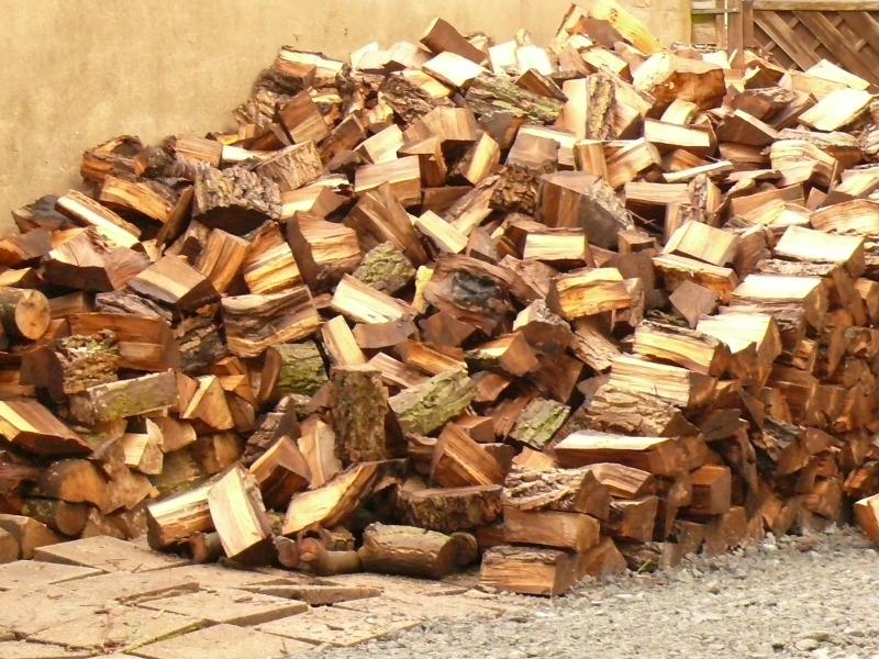 brennholz2